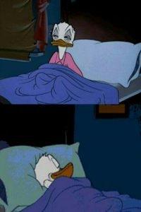 Sleepy Donald Duck In Bed