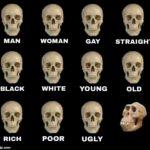 Idiot Skull