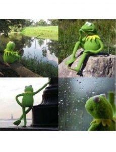 Kermit Waiting
