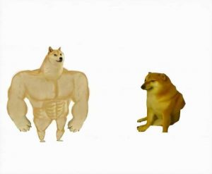 Strong dog vs weak dog