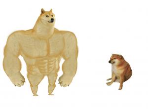 Big dog small dog