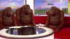 Where banana blank