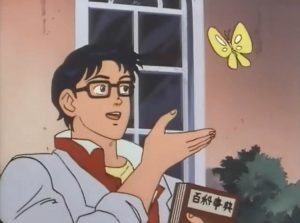 Is this a bird?