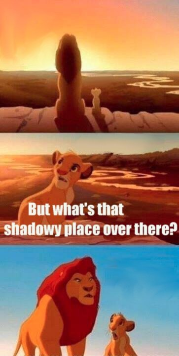 Simba Shadowy Place