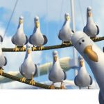Finding Nemo Seagulls